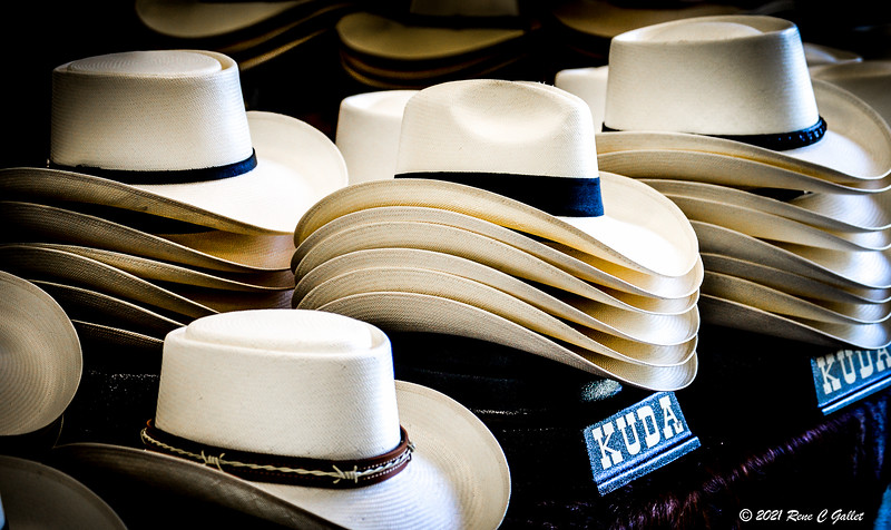 RIDING HATS 02