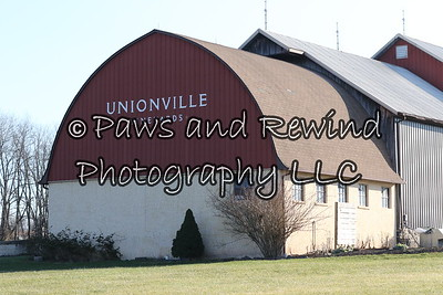 December 14, 2016 Amwell Valley Hounds at Unionville Vineyards