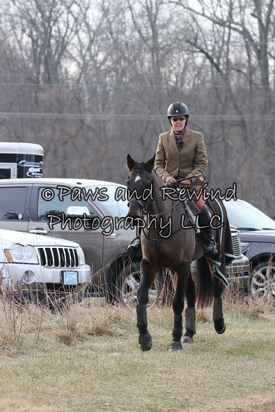 December 21,  Amwell Valley Hounds at Torsillieri Farm