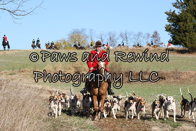 November 13, 2016 Amwell Valley Hounds