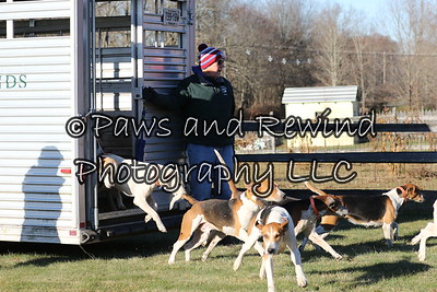 November 23, 2016 Amwell Valley Hounds Hunt