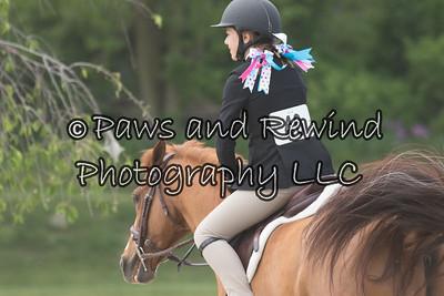 Children's Horse/ Pony