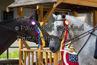July 14-15 Liberty Side Saddle Show