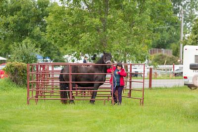 Lansdowne Horse Festival © Lindy Martin