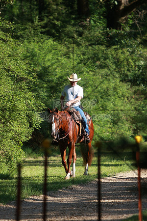 100612 ACTHA Competitive Trail Ride