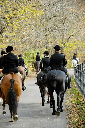 Riders on way to the annual blessing of the fox hunting hounds, horses, and riders at the Iroquios Hunt Club in Lexington, Kentucky USA. The event marks the beginning of the hunting season.