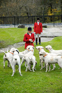 Huntmen with foxhounds awaiting the blessing of the hounds at the Iroquios Hunt Club in Lexington, Kentucky USA. The event marks the beginning of the hunting season.