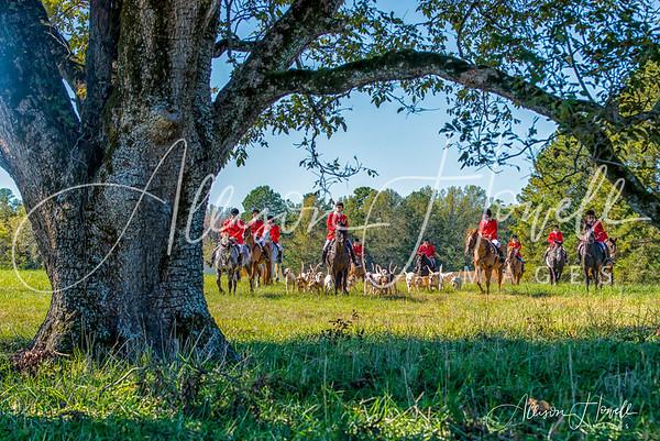 2018 Belle Meade Opening Hunt