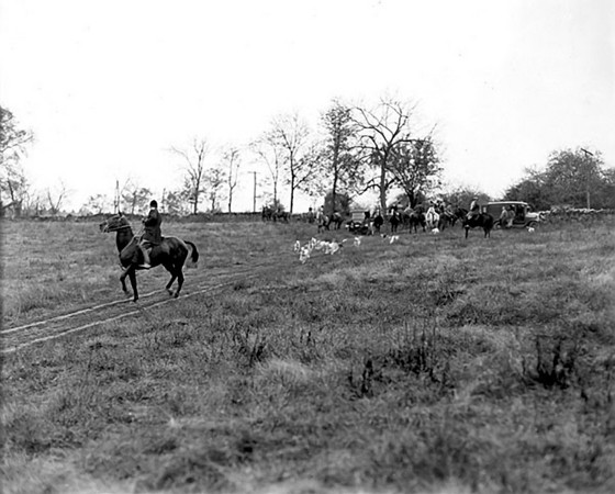 Title: Fayette County, Kentucky. Iroquois Hunt Club - scene at the Iroquois hunt. Date: 1900-1954 Collection: C. Frank Dunn Photographs Collection, 1900-1954, bulk 1920-1940 Creator: Dunn, C. Frank, 1883-1954