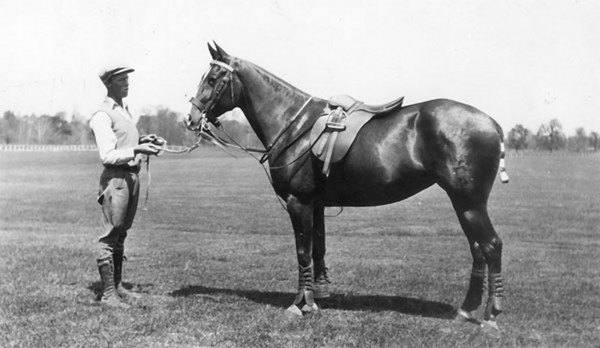 "Title: Fayette County, Kentucky. Iroquois Hunt Club. Mrs. John E. Madden's, ""Connemara"". Date: 1900-1954 Collection: C. Frank Dunn Photographs Collection, 1900-1954, bulk 1920-1940"