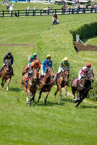 Stock image of horse and rider steepelchase competitors at the High Hope Steeplechase held annually at the Kentucky Horse Park in Lexington, Kentucky, USA.