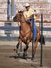 Kurt Kneidinger on Farrells Little Tina , 2010 2-D POLE BENDING (Both days)