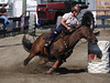Rebecca McWhirter on Farrels Pacific Cash , 4-D BARRELS - 1st Run on Sunday July 11, 2010