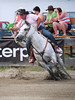 Rose Twiner on Gone Pure Country  4-D BARRELS 2nd Run and EXHIBITION RUNS on Sat. July 10, 2010