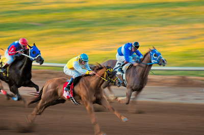 "Annual quarter horse races held at the Red Mile track in Lexington, Kentucky, USA  showing the blurred action of the running horses, with ""Little Riverstreet"" and ""Flashin by Yawl"" battling it out for first place."