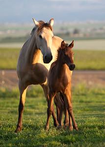 quinten&mom1333