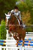 Equestrian Events : 3 galleries with 940 photos