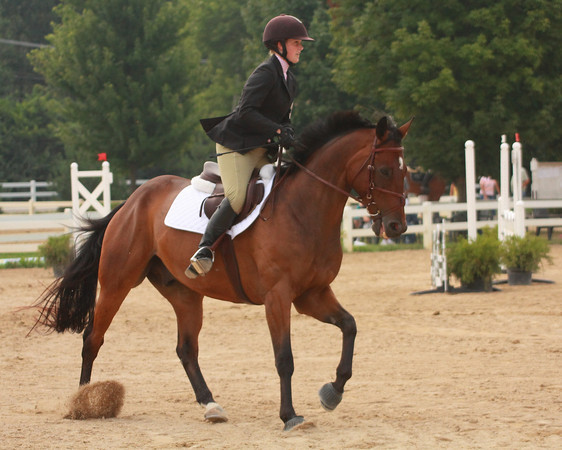 Kylie Cooper on Domino competing at Lamplight in Chicago
