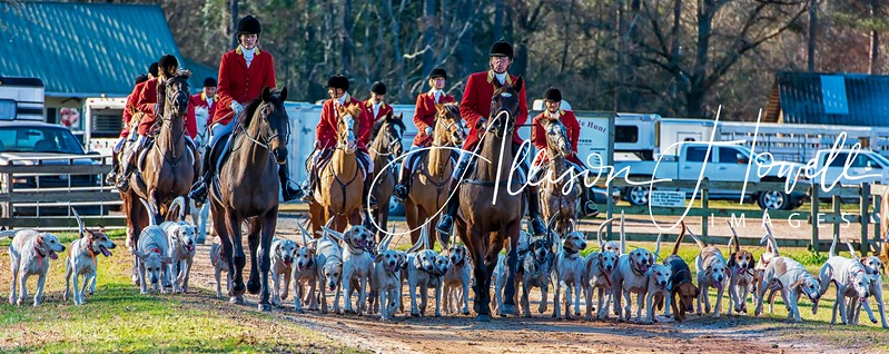 Belle Meade and Shakerag 2016