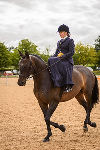 Sidesaddle Nationals 2017-22-19