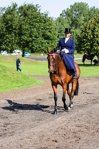 National Sidesaddle Show Day 3-7-6