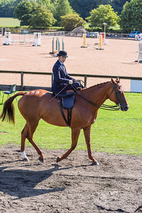 National Sidesaddle Show Day 3-5-4