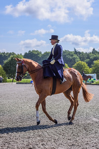 National Sidesaddle Show Day 3-32-31