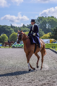 National Sidesaddle Show Day 3-31-30