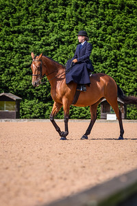 National Sidesaddle Show Day 3-40-38
