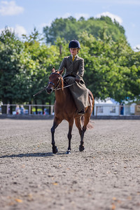 National Sidesaddle Show Day 3-20-19