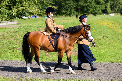 National Sidesaddle Show Day 3-4-3