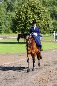 National Sidesaddle Show Day 3-6-5