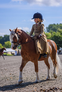 National Sidesaddle Show Day 3-10-9