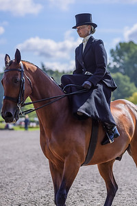 National Sidesaddle Show Day 3-27-26