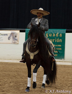 The Mexican Heritage Musical Freestyle Challenge was held on September 2, 2011.  National Champions were also crowned in Piaffe, Passage, and the Spanish Walk.