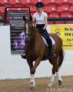 The PRE National Celebration of the Pure Spanish Horse Show was held in Las Vegas from August 30, 2011 to September 3, 2011.  As the Head Photographer I was able to capture many great moments, and preserve those special memories.  Thank you to everyone who made the show a success, and to the horses and riders who allowed me to share their day with them.
