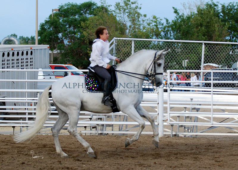 Barbara Gardner warming up her Andalusian (PRE) gelding, Vigo in the outdoor arena