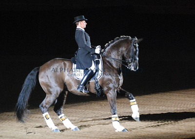 An Evening With Dancing Horses at the National Western Stock Show, 2009