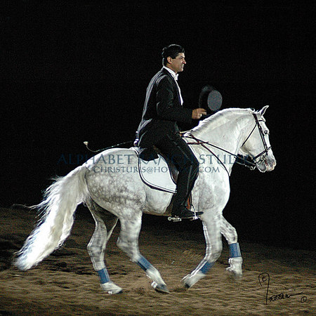 Jerry Diaz on his Andalusian
