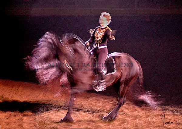 HAIRY  M-O-N-S-T-E-R  IN MOTION!!!  Sabine Schut-Kery on her Friesian.