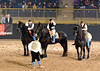 Friesian group