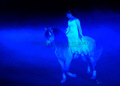 An Evening with Dancing Horses at the National Western Stock Show, January 2008, Denver, Colorado