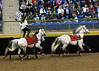 Roman Riding 4156 al sh300