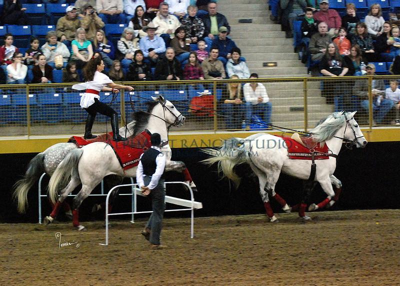 Roman Riding 4158 al sh300