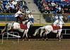 Roman Riding 4150 al sh300
