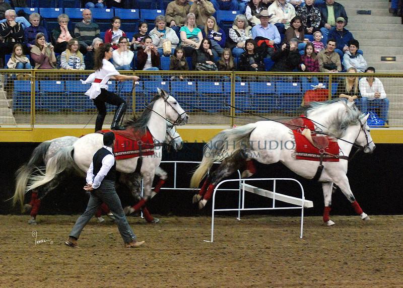 Roman Riding 4149 al sh300