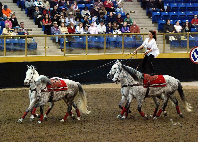Roman Riding 4141 al sh300