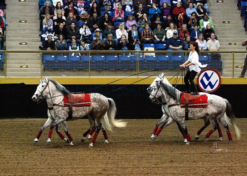 Roman Riding 4136 al sh300