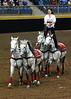 Roman Riding 4142 al sh300