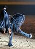 Zorro 4481 al il  9 sh300